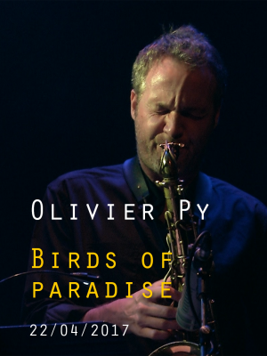 Image de couverture OLIVIER PY - BIRDS OF PARADISE